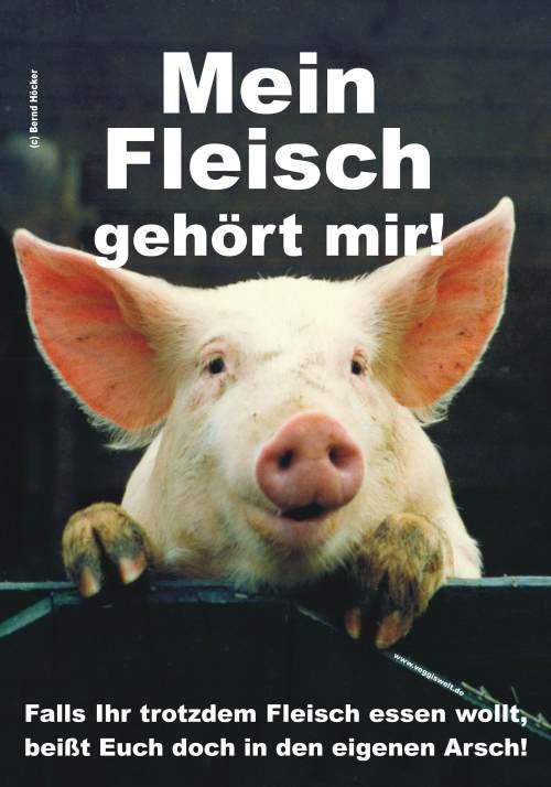 Höcker Verlag
